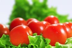 Cherrygrönsallattomater arkivfoto