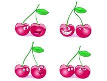 Cherrygyckel Arkivbild