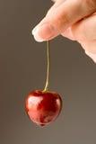 Cherryhand Fotografering för Bildbyråer