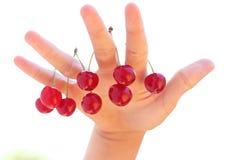 Cherryhand Arkivfoto