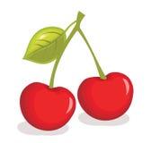 Cherryillustrationvektor stock illustrationer