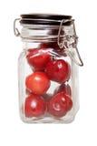 Cherryjar royaltyfri foto