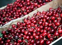 Cherryjuicefull Royaltyfri Foto