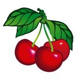 Cherryleafs Arkivbilder