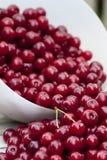Cherrymaträtt Arkivfoton