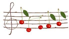 Cherrynotsystem arkivbild