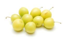 Cherryplommon royaltyfria foton