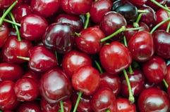 Cherryred arkivfoto