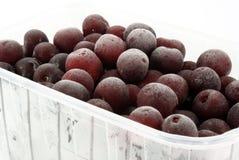 cherrys, котор замерли быстро Стоковое Изображение RF