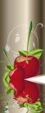 Cherrys Стоковая Фотография