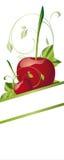Cherrys Royalty Free Stock Photography