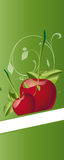 Cherrys Stock Photo