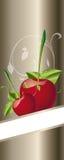 Cherrys Royalty Free Stock Photo
