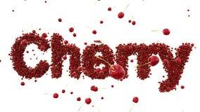 Cherrys frescos concepto de la comida 3d Animación realista Aislante en blanco libre illustration