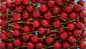 Cherrys que baja con descensos del agua Animación realista aislante libre illustration