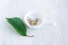 Cherryssteen in de witte juskom en het groene blad Stock Fotografie
