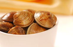 Cherrystone clams in a bowl Royalty Free Stock Image