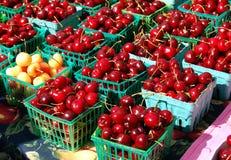Cherrysun Arkivfoton