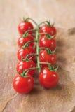 Cherrytomater Arkivbilder