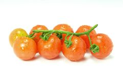 Cherrytomater Arkivfoton