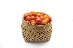 Cherrytomater i korg Arkivfoto