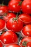 Cherrytomatvatten royaltyfri foto