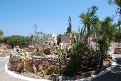 Chersonissos, Cypr, Grecja - 31 07 2013: Ogród zieleni kłujący kaktusy r pod piekącym słońcem i głębokim niebem zdjęcie royalty free