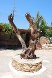 Chersonissos, Cyprus, Griekenland - 31 07 2013: beeldhouwwerk van hout in het midden van de tuin van installaties en bloemen in K royalty-vrije stock foto's