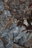 Chert rock background texture Stock Image