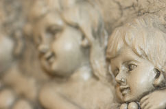 Cherub. Close up of Cherub angels in stone carving Royalty Free Stock Photography