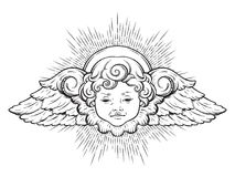Cherub cute winged curly smiling baby boy angel with rays of linght isolated over white background. Hand drawn design vector illus Royalty Free Stock Images