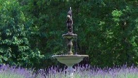 Cherub fountain stock video