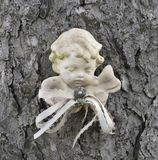 Cherub Head Stock Images