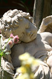 Cherub rock 3 Stock Photography