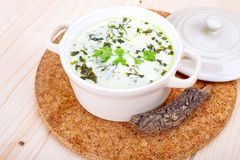Chervil soup Royalty Free Stock Photography