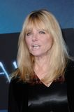 Cheryl Tiegs. At the Los Angeles premiere of Avatar at Grauman's Chinese Theatre, Hollywood. December 16, 2009 Los Angeles, CA Picture: Paul Smith / stock photography