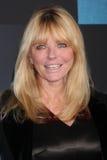 Cheryl Tiegs Royalty Free Stock Image