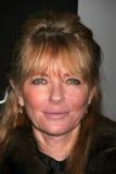 Cheryl Tiegs lizenzfreie stockfotografie