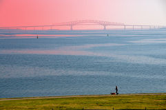 Chesapeake Bay Bridge and Runner. Runner with dog with the Chesapeake Bay bridge in the background Royalty Free Stock Photography