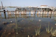 Chesapeake Bay docks Royalty Free Stock Photography