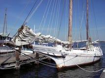 Chesapeake de Bonieten van de Baai Stock Fotografie