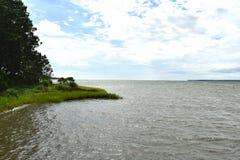 Chesapeake zatoki wody widok obok ładnego bagna obrazy royalty free