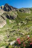 Cheserys, massiccio del Monte Bianco, Chamonix-Mont-Blanc, Savoia haute, Francia Fotografia Stock Libera da Diritti
