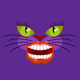 Cheshire cat is an animal from Alice in Wonderland. Broad smile. Teeth and Mouth Royalty Free Stock Images