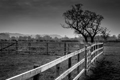 Cheshire countryside in black and white. On cold February day Stock Photos