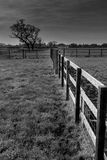 Cheshire countryside in black and white Royalty Free Stock Photography