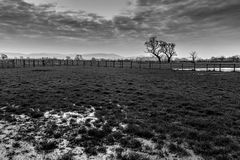 Cheshire countryside in black and white Stock Image