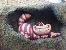 Cheshire kattdetalj på disneyland Los Angeles royaltyfria foton