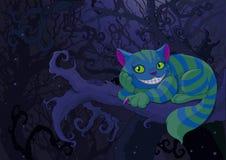 Cheshire kot Obrazy Stock