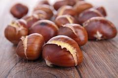 Chesnut stock afbeeldingen